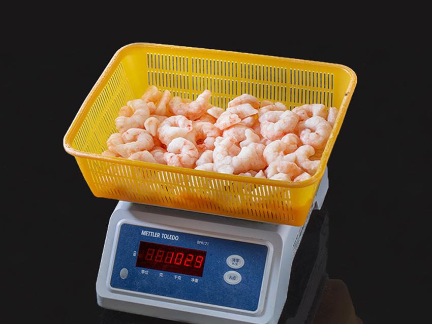 0 fotografia carga control de calidad pescado congelado link seafood sources 008 2