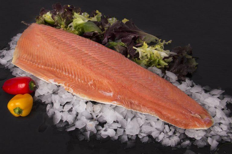 Chum and pink salmon (Oncorhynchus keta Oncorhynchus gorbucha)