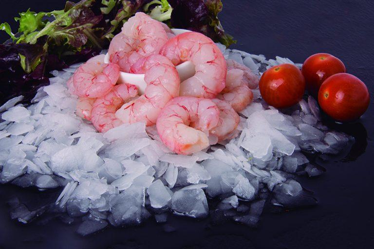 Pud shrimp (Solenocera melantho Solenocera spp)