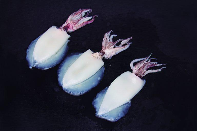 Squid cleaned (Loligo duvauceli)